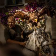 Valkerij Ardanwen - Foto's - Show en spektakels